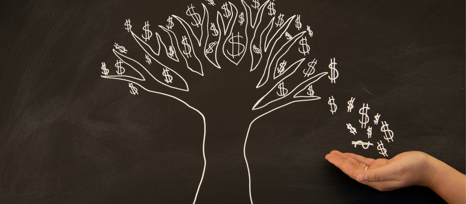 Women and financial literacy