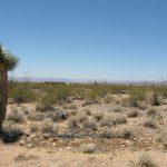 238-288 S. Contaro Rd Desert Skies Sub. Yucca AZ