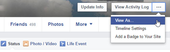 "Facebook - ""View As"" screenshot"