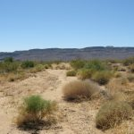 Mohave County Parcel #207-22-011