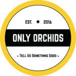 Only Orchids