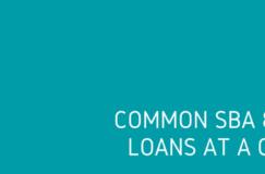 SBA loans at a glance
